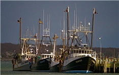 fishing boat fleet